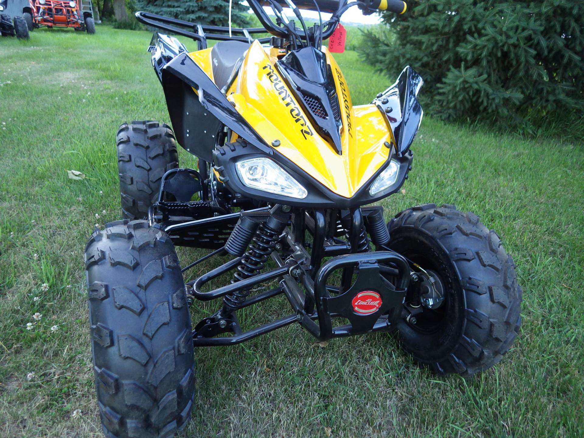 2017 Coolster ATV-3125CX-2 in Howard Lake, Minnesota - Photo 4