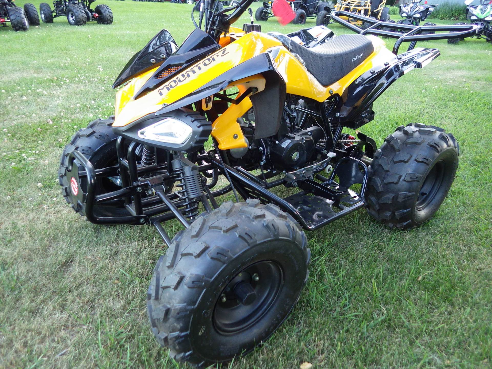 2017 Coolster ATV-3125CX-2 in Howard Lake, Minnesota - Photo 5