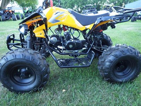 2017 Coolster ATV-3125CX-2 in Howard Lake, Minnesota