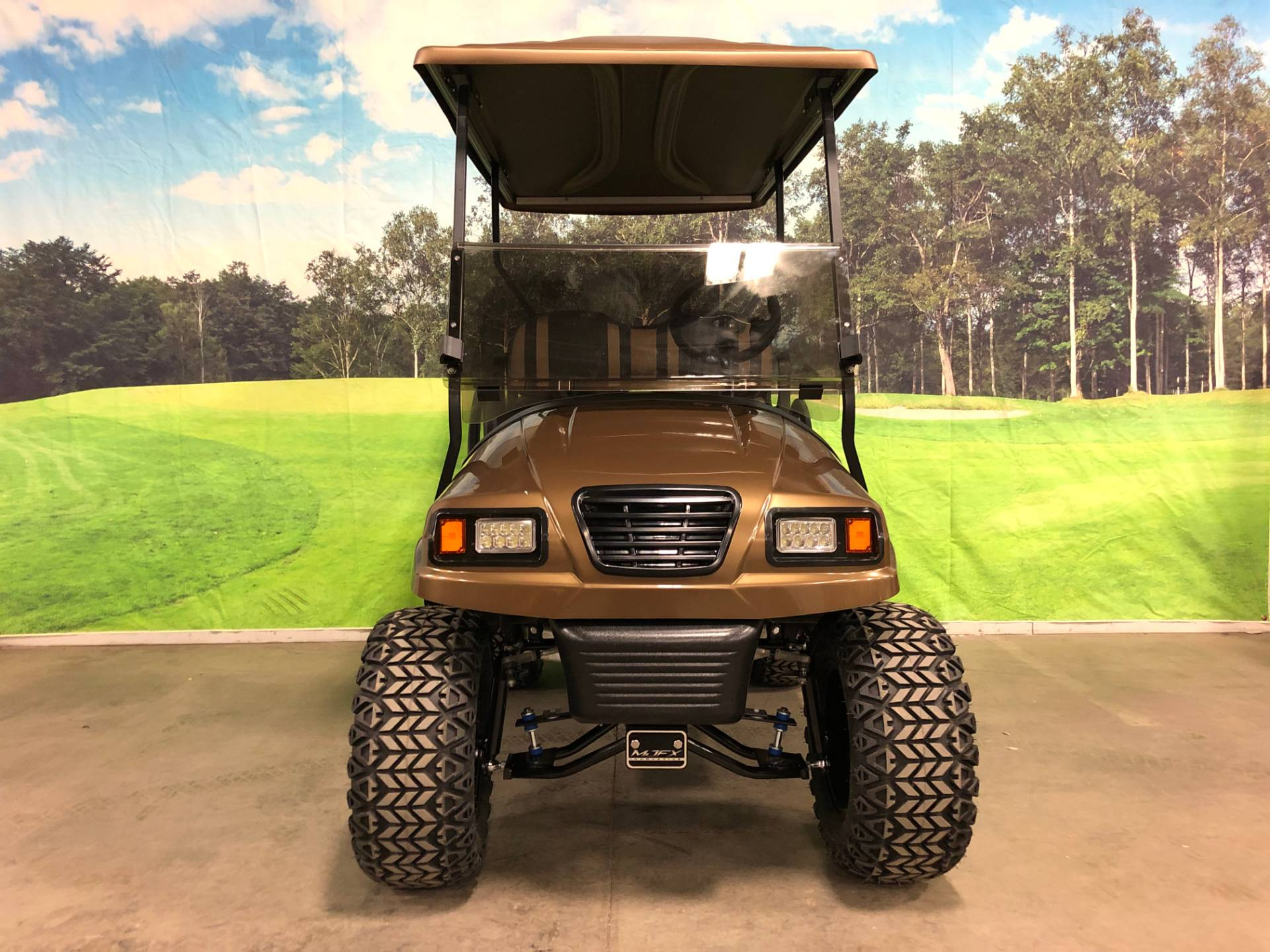 2013 Club Car Precedent in Rogers, Minnesota - Photo 10