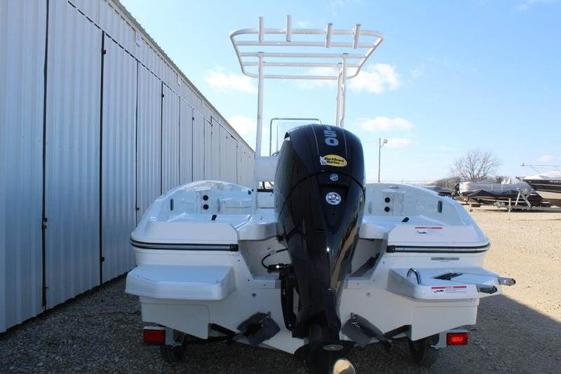 2019 Bayliner Element F21 in Afton, Oklahoma - Photo 4