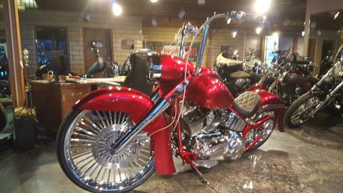 2014 Harley-Davidson Softail in South Saint Paul, Minnesota - Photo 19