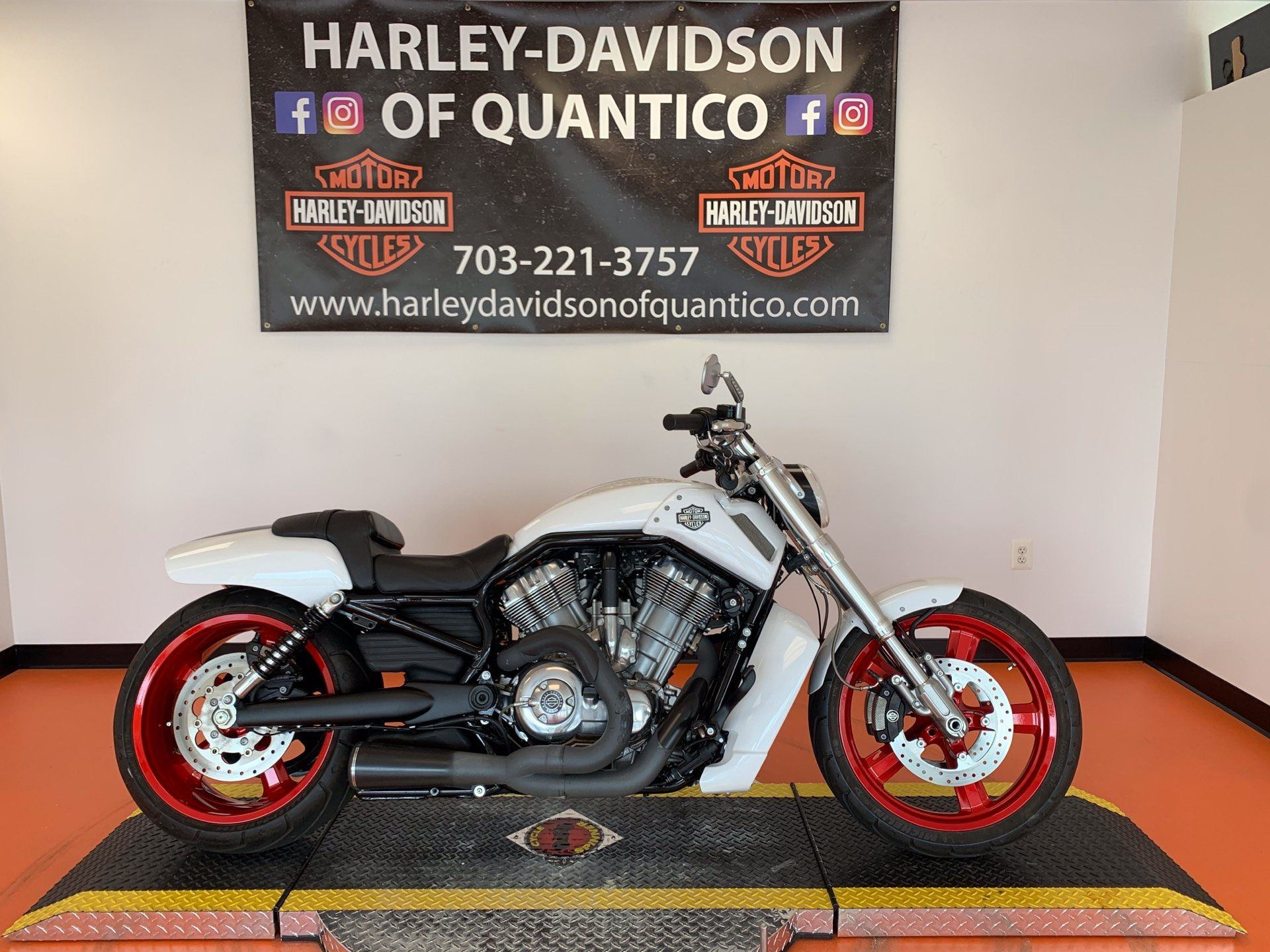 2016 Harley-Davidson V-Rod Muscle® in Dumfries, Virginia - Photo 1