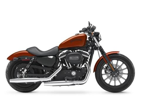 2013 Harley-Davidson Sportster® Iron 883™ in New York Mills, New York