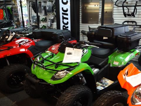 2016 Arctic Cat 300 in Zulu, Indiana
