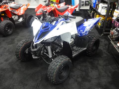 2018 Yamaha Raptor 90 in Zulu, Indiana