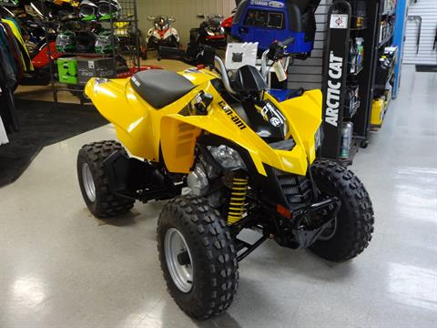 2019 Can-Am DS 250 in Zulu, Indiana
