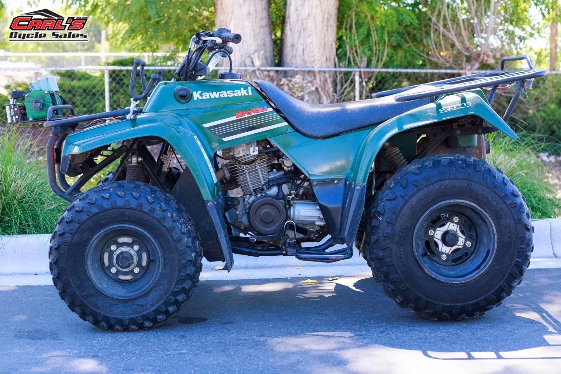 2008 Bayou 250
