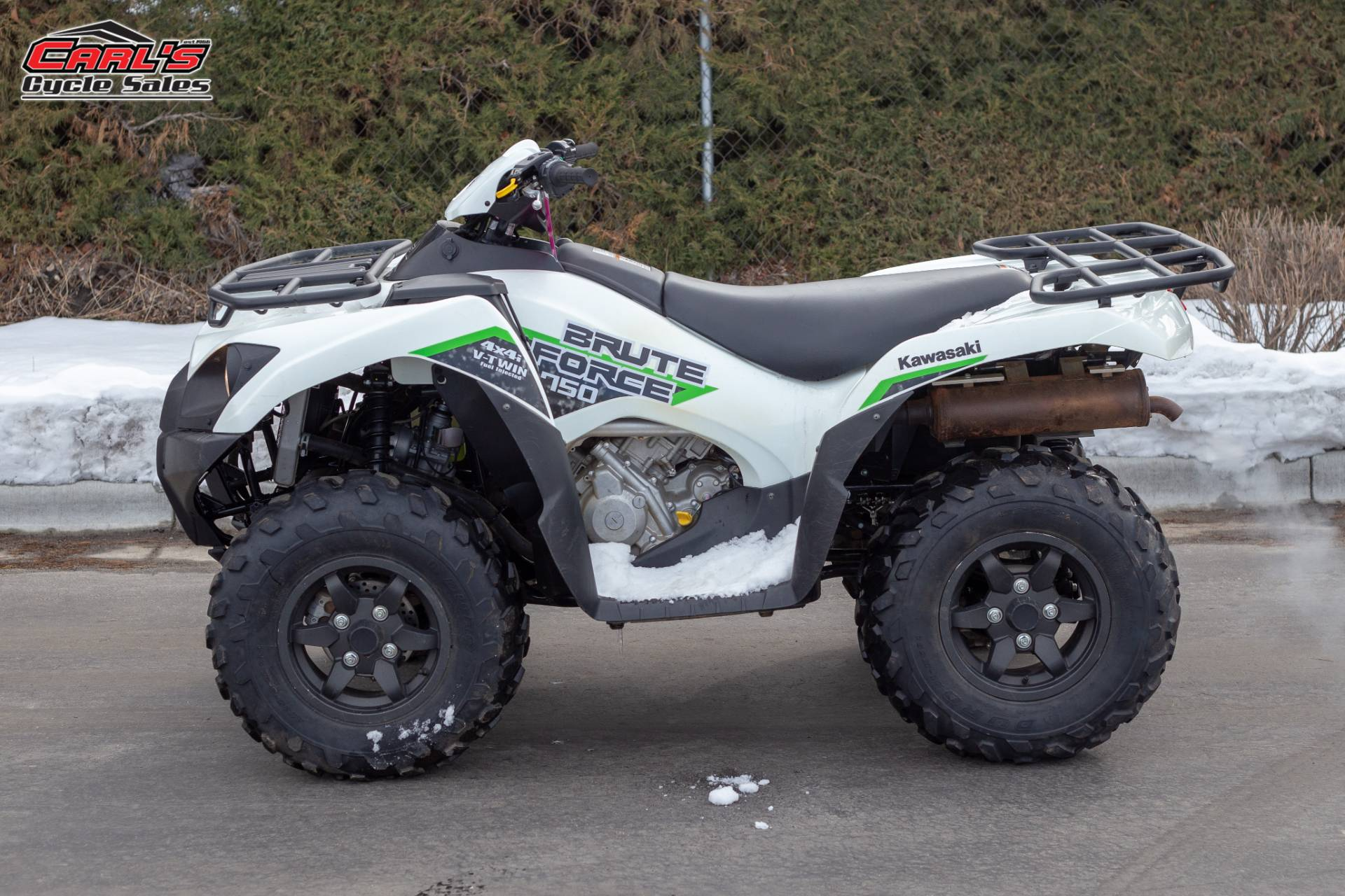 2019 Kawasaki Brute Force 750 4x4i EPS for sale 6837