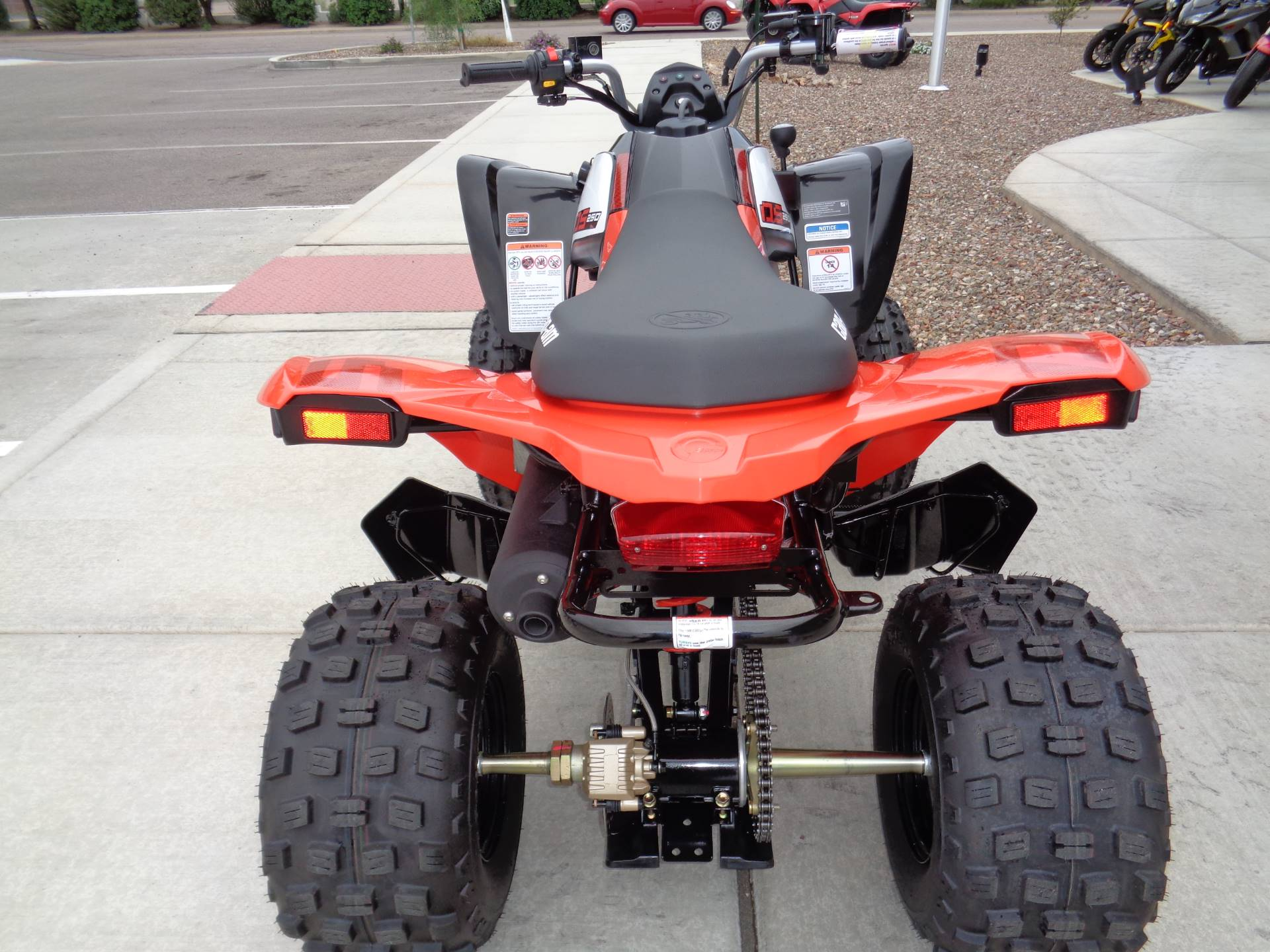 2020 Can-Am DS 250 in Sierra Vista, Arizona - Photo 7