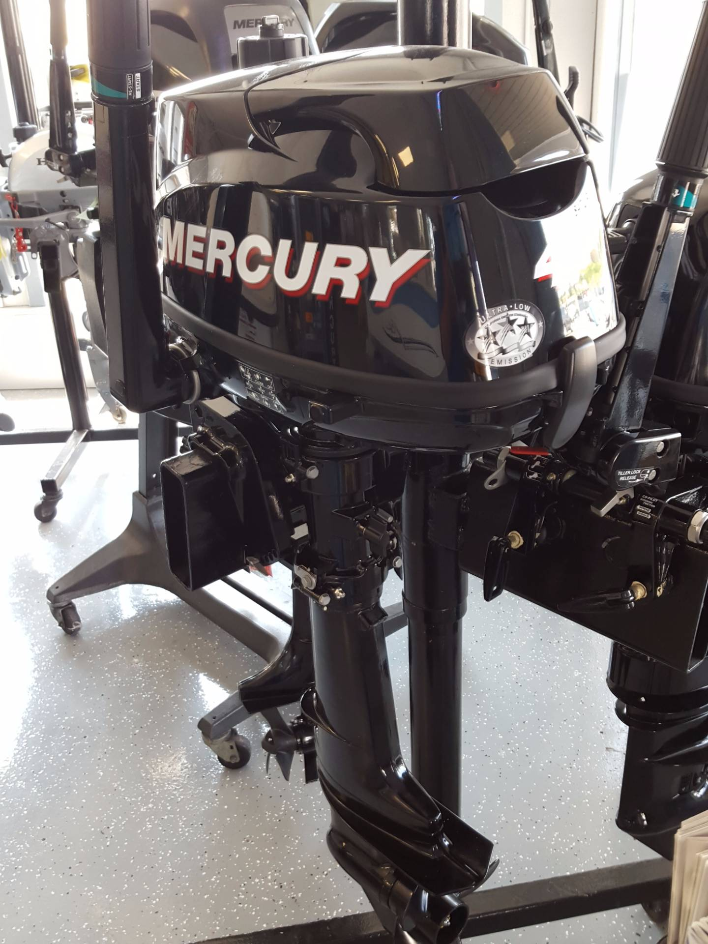 2014 Mercury Marine 4MH in Oceanside, New York