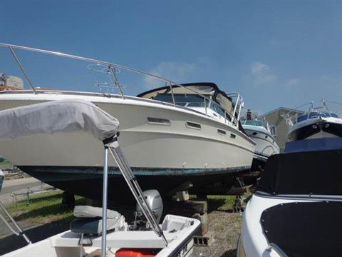1977 Sea Ray 30 in Oceanside, New York - Photo 1