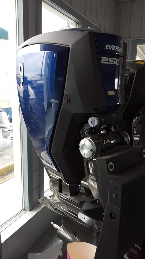 2017 Evinrude E250XHAG in Oceanside, New York