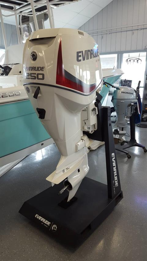 2017 Evinrude E250DPXAB in Oceanside, New York