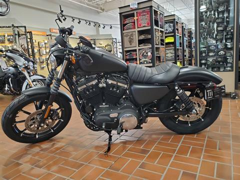 2020 Harley-Davidson 883 Iron in Albert Lea, Minnesota