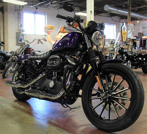 2014 Harley-Davidson Sportster® Iron 883™ in New London, Connecticut - Photo 2