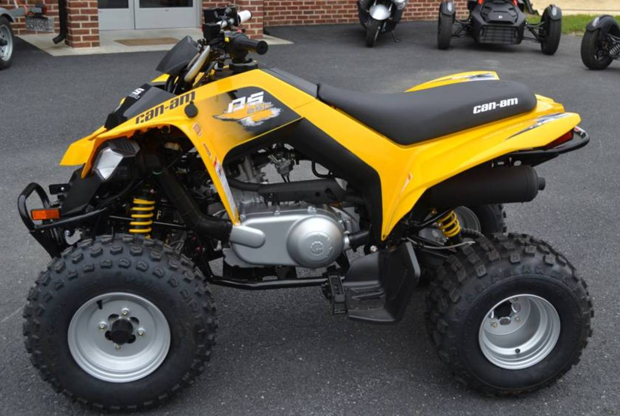 2019 Can-Am DS 250 in Grantville, Pennsylvania - Photo 2