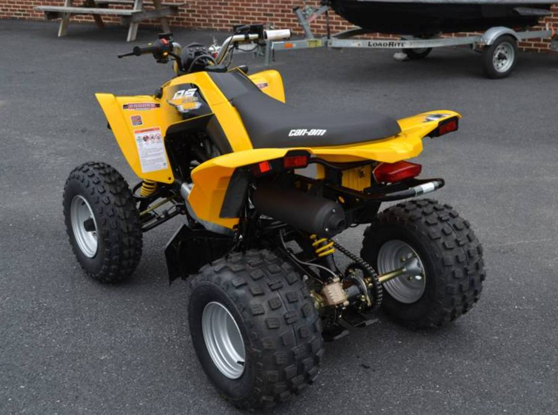 2019 Can-Am DS 250 in Grantville, Pennsylvania - Photo 5