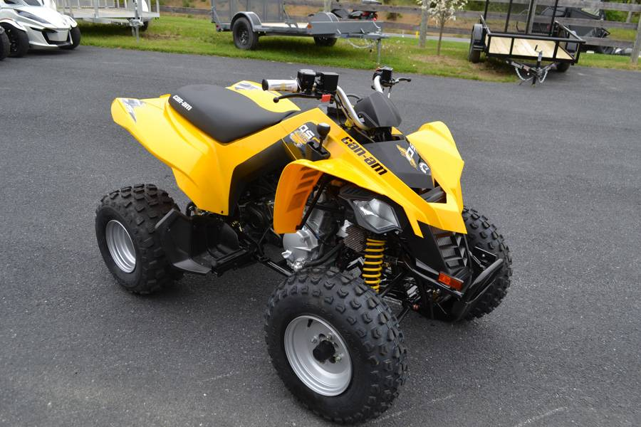 2019 Can-Am DS 250 in Grantville, Pennsylvania - Photo 1