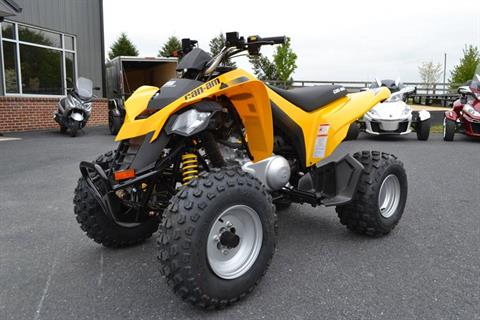 2019 Can-Am DS 250 in Grantville, Pennsylvania - Photo 3