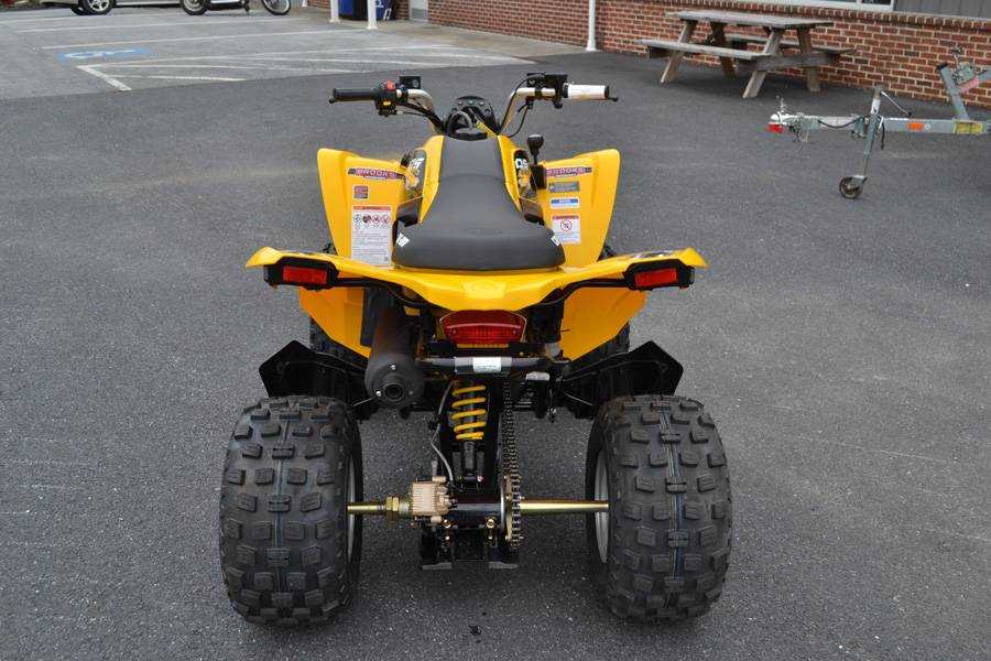 2019 Can-Am DS 250 in Grantville, Pennsylvania - Photo 7