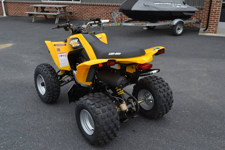 2019 Can-Am DS 250 in Grantville, Pennsylvania - Photo 8