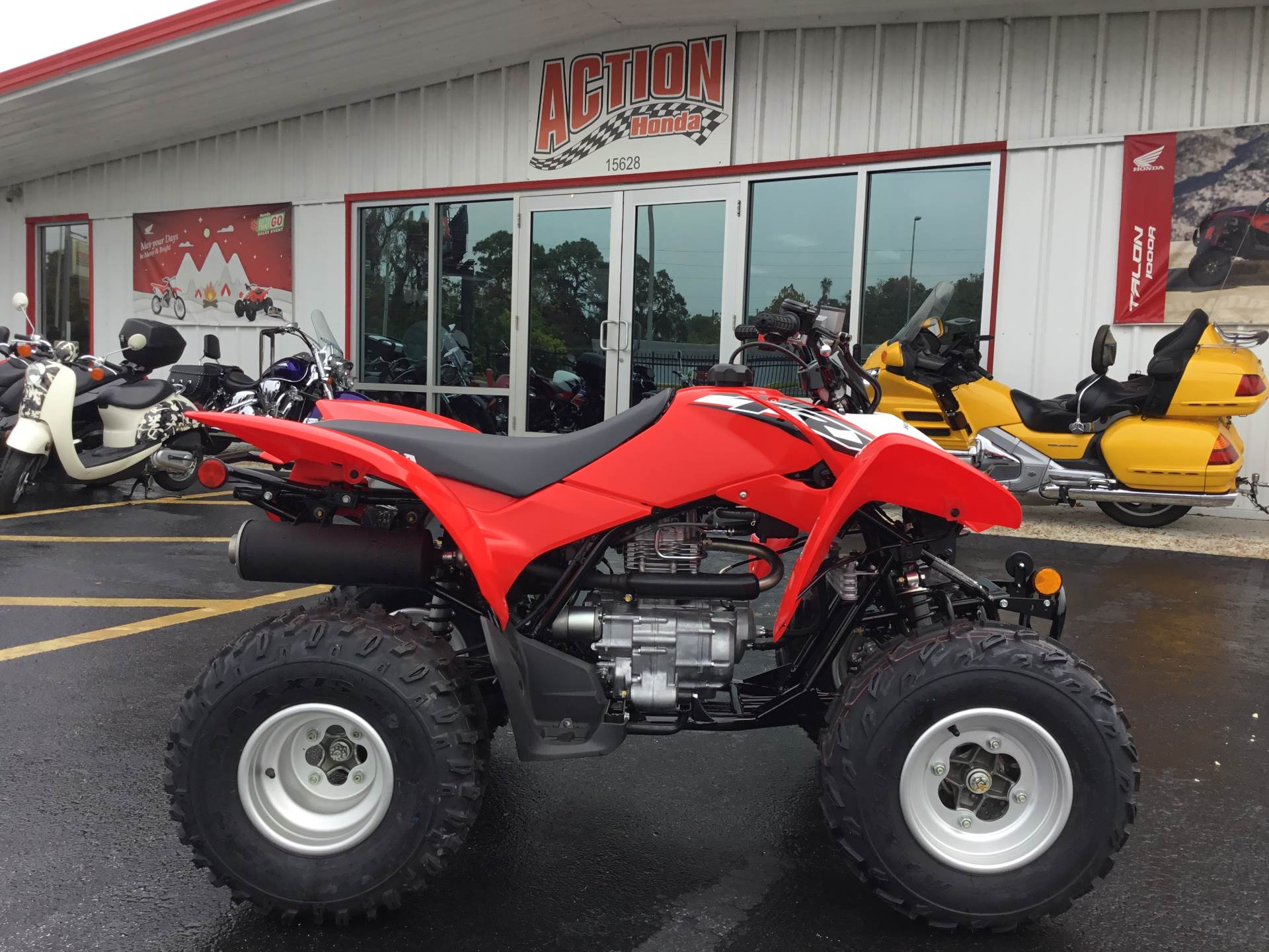 2020 Honda TRX250X in Hudson, Florida - Photo 1