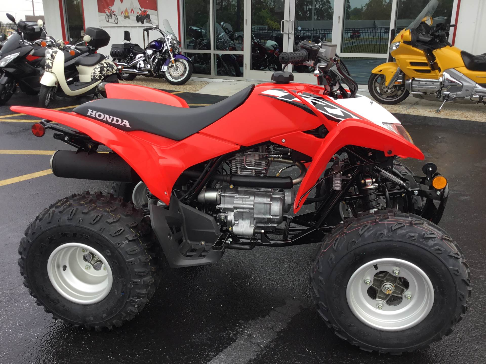 2020 Honda TRX250X in Hudson, Florida - Photo 3