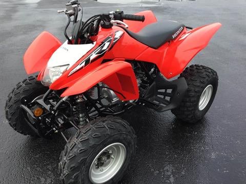 2020 Honda TRX250X in Hudson, Florida - Photo 5