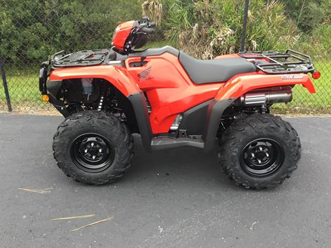2021 Honda FourTrax Foreman Rubicon 4x4 Automatic DCT in Hudson, Florida - Photo 9