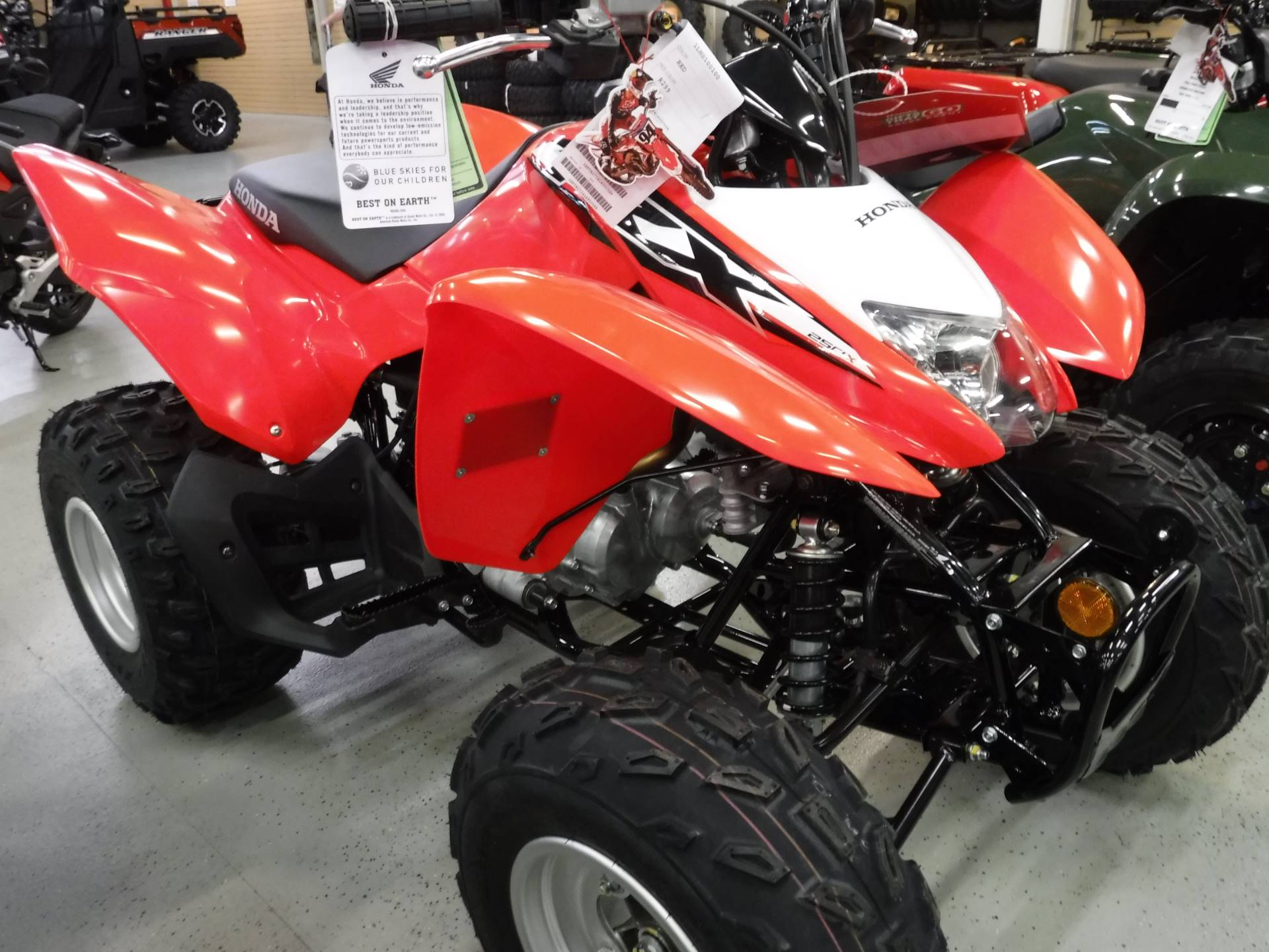 2020 Honda TRX250X in Hermitage, Pennsylvania - Photo 1