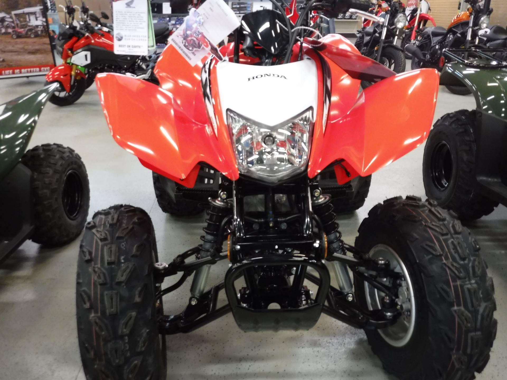 2020 Honda TRX250X in Hermitage, Pennsylvania - Photo 2