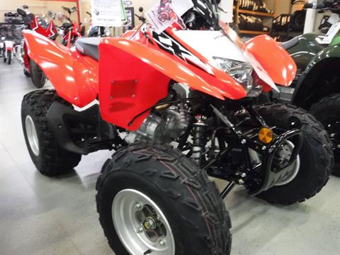 2020 Honda TRX250X in Hermitage, Pennsylvania - Photo 3