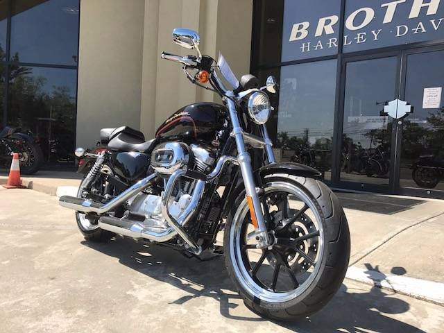 2011 Harley-Davidson Sportster® 883 SuperLow™ in Branford, Connecticut