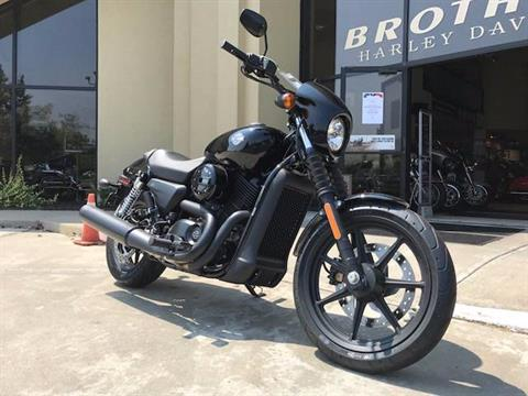 2017 Harley-Davidson Street® 500 in Branford, Connecticut