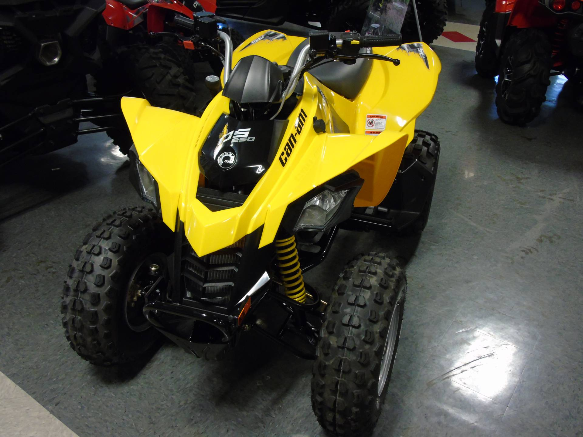 2019 Can-Am DS 250 in Wilmington, Illinois