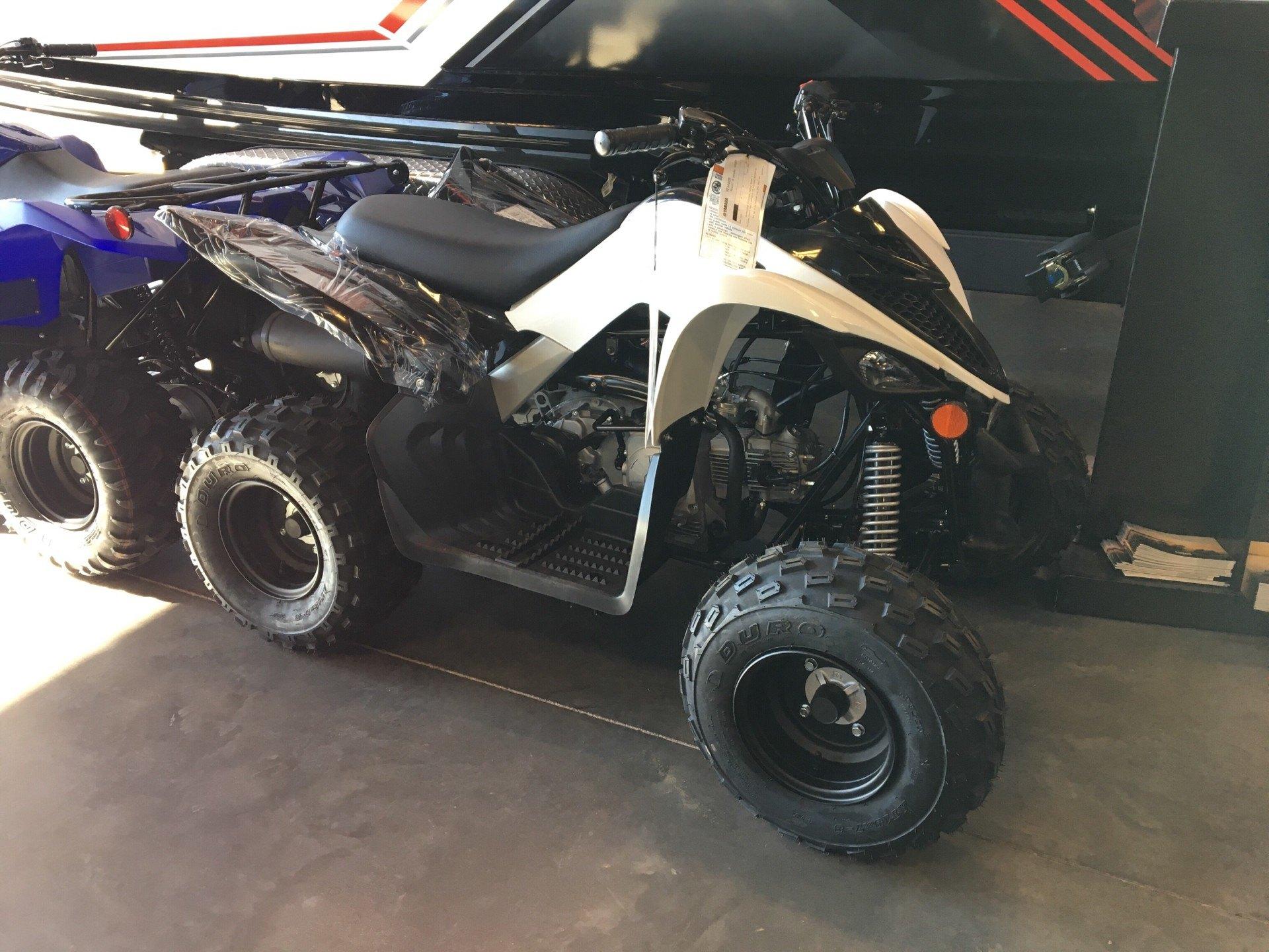2019 Yamaha Raptor 90 for sale 24785