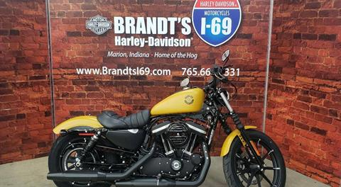 2019 Harley-Davidson Iron 883™ in Marion, Indiana