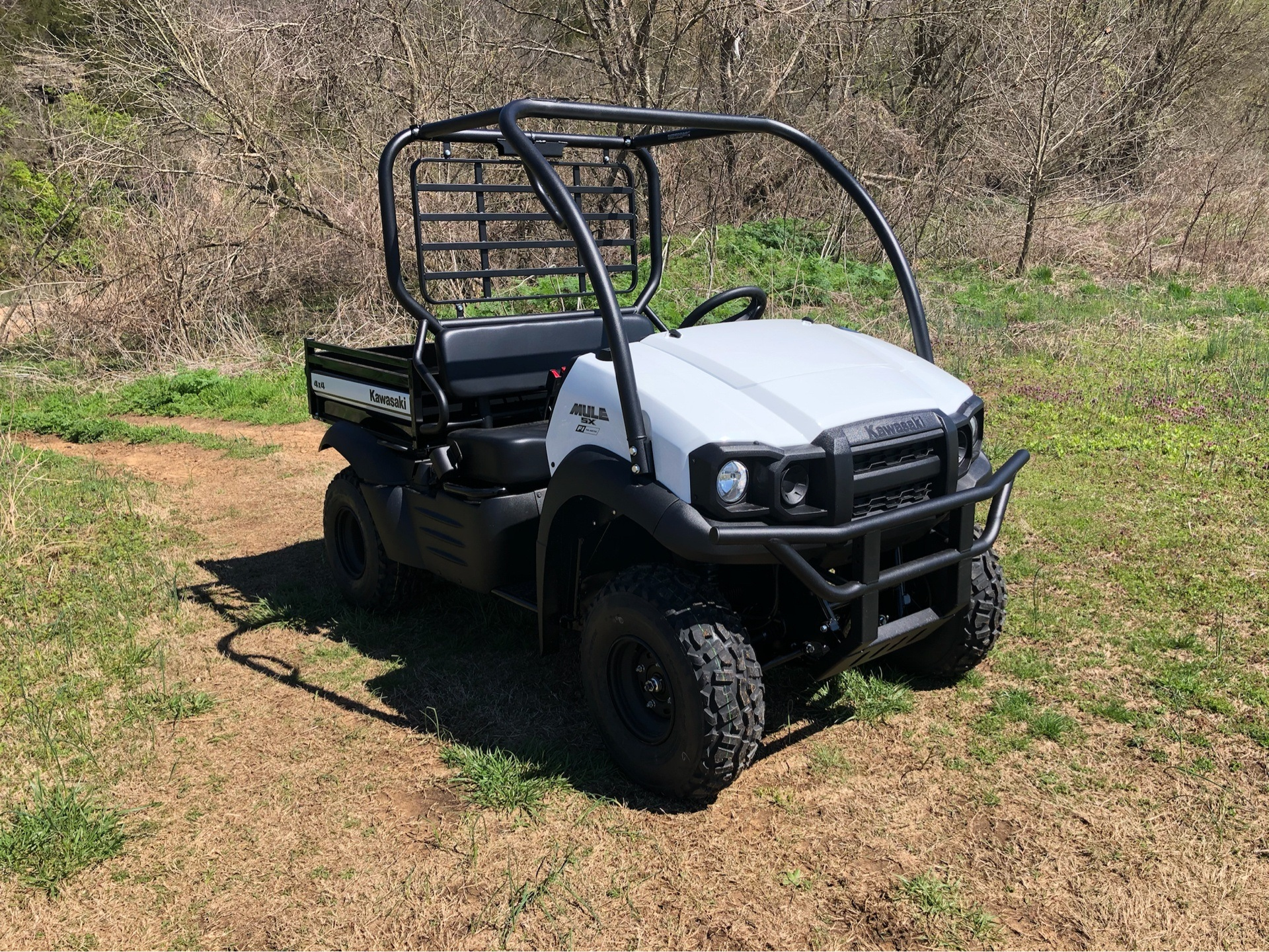 2020 Kawasaki Mule SX 4x4 SE FI in Harrison, Arkansas - Photo 1