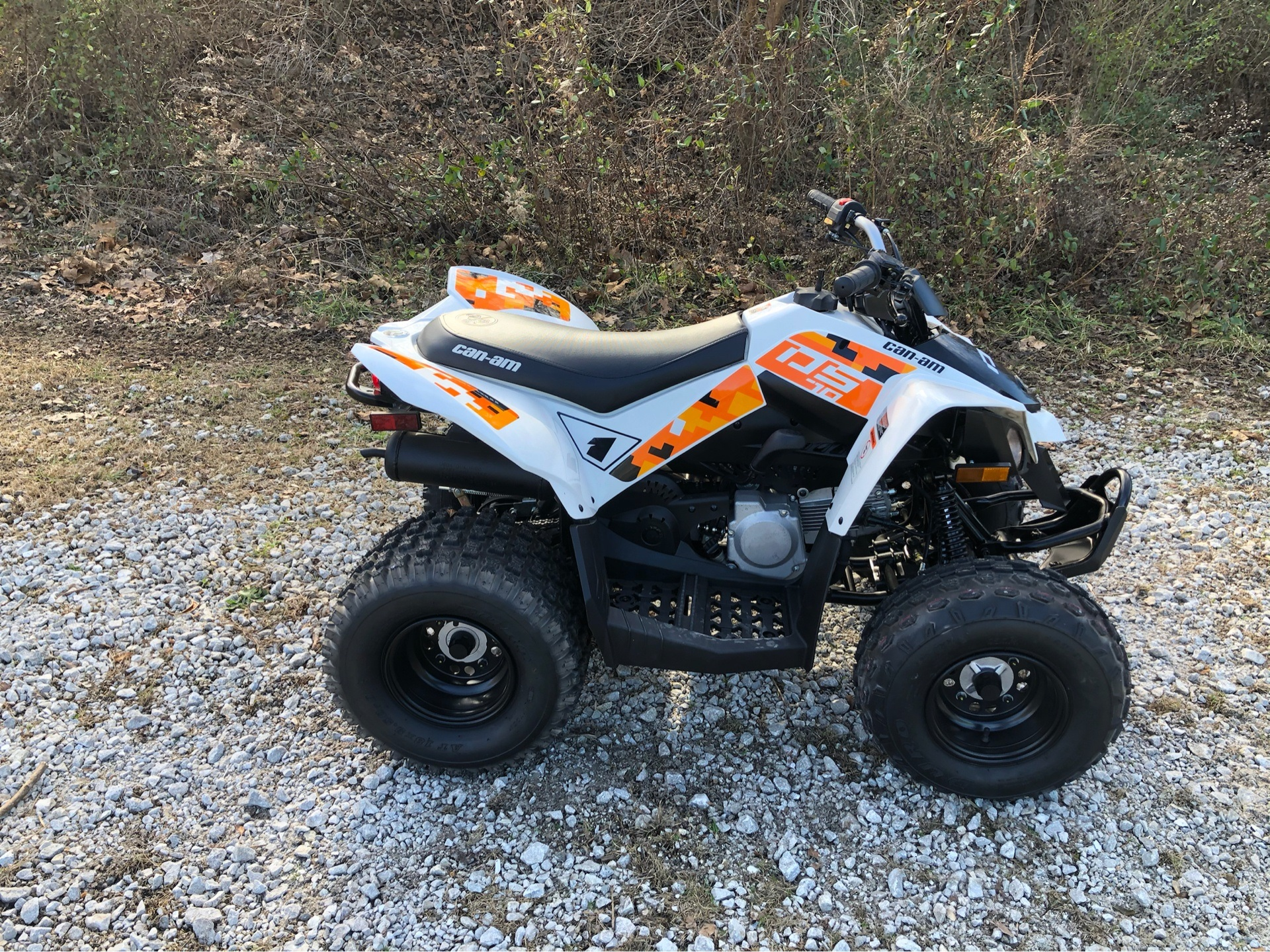 2019 Can-Am DS 70 in Harrison, Arkansas - Photo 3