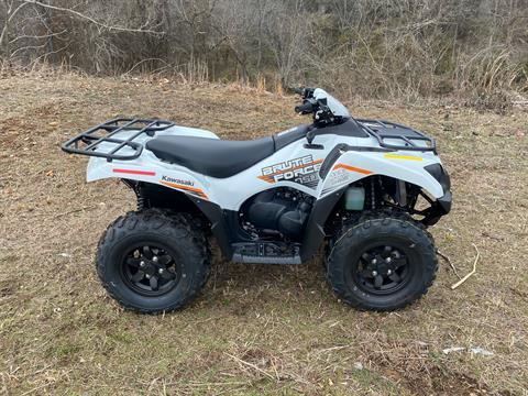 2021 Kawasaki Brute Force 750 4x4i EPS in Harrison, Arkansas - Photo 2