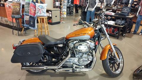 2014 Harley-Davidson Sportster® SuperLow® in Broadalbin, New York
