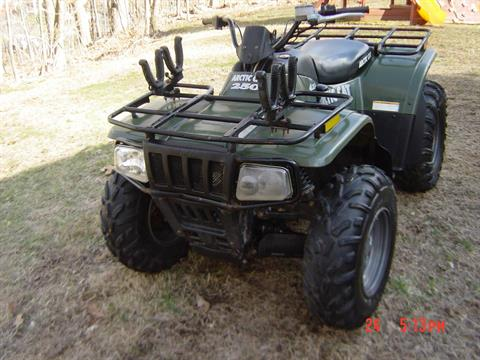 2004 Arctic Cat 250 4x4 in Brewster, New York - Photo 3