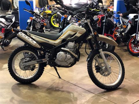 2019 Yamaha XT250 in Denver, Colorado