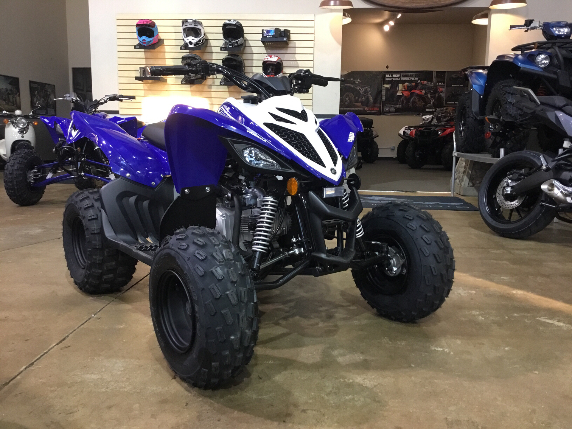 2019 Yamaha Raptor 90 in Denver, Colorado - Photo 3