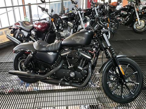 2017 Harley-Davidson Iron 883™ in Monroe, Michigan
