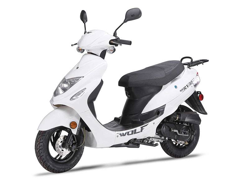 2021 Wolf Brand Scooters Wolf RX-50 in Richmond, Virginia - Photo 1