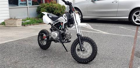 2020 SSR Motorsports SR 110 in Hayes, Virginia - Photo 3
