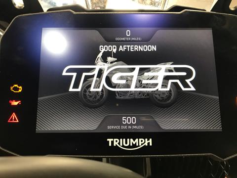 2020 Triumph Tiger 900 Rally Pro in Belle Plaine, Minnesota - Photo 13