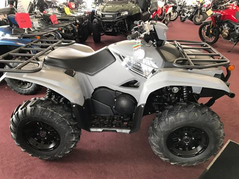 2019 Yamaha Kodiak 700 EPS in Belle Plaine, Minnesota - Photo 2